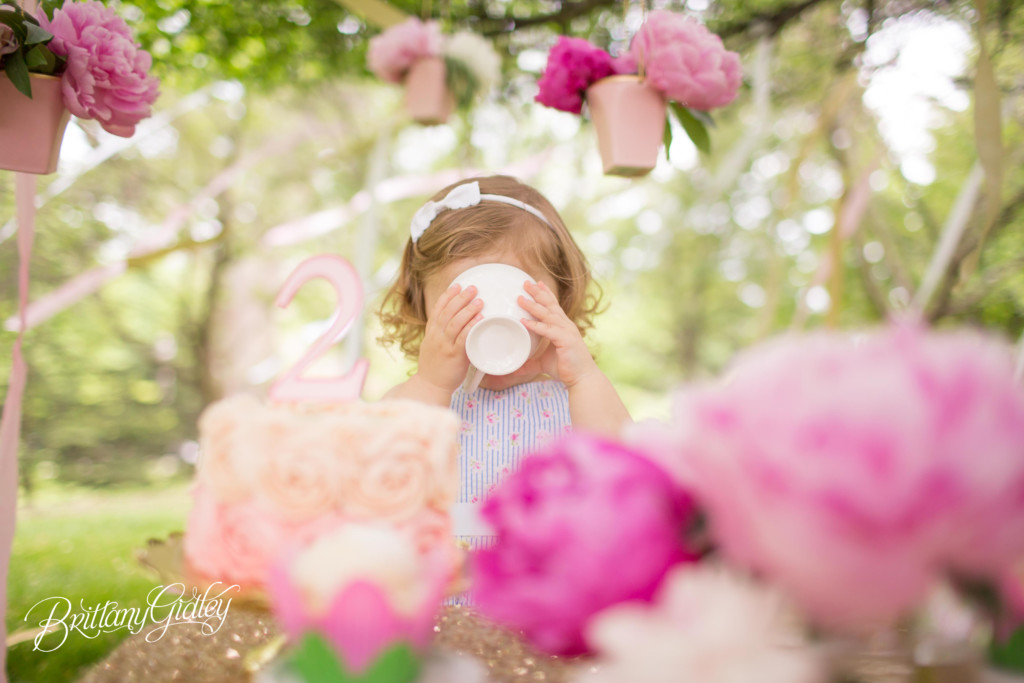 Tea Party Dream Session | Brielle is 2! | Cleveland Museum of Art