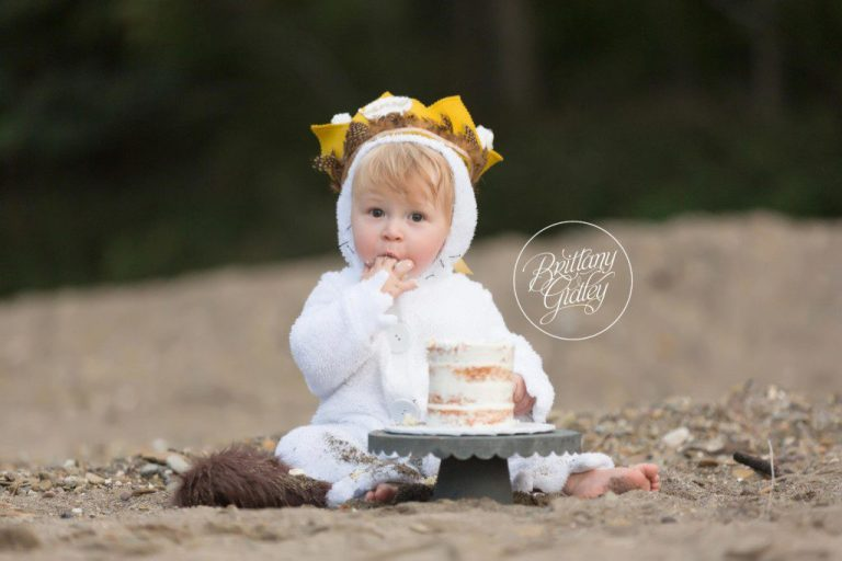 Wild Things Cake Smash | First Birthday | Photo Shoot | Party | Dream Session | Brittany Gidley Photography LLC www.brittanygidley.com