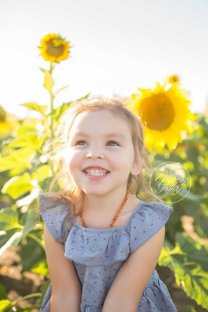 Prayers From Maria Sunflower Field | Toddler Photographer | Avon Ohio