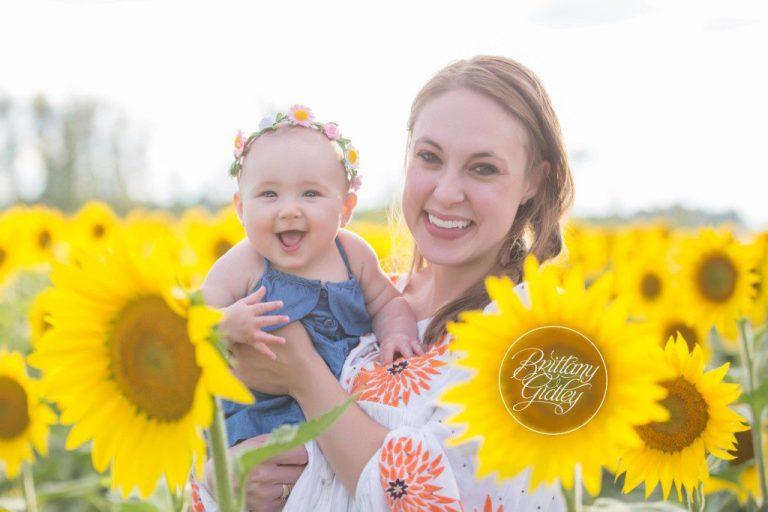 Prayers From Maria | Avon Ohio | Sunflowers | Flower Field