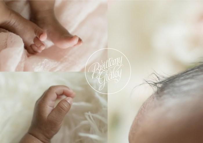 Preemie | NICU Photography | NICU Photographer