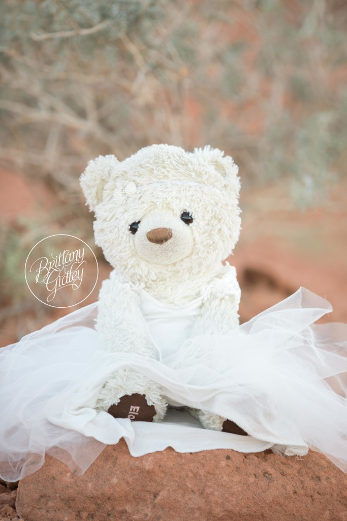 Las Vegas Photographer | Valley of Fire | Travel Photography | Molly Bear | Brittany Gidley Photography LLC