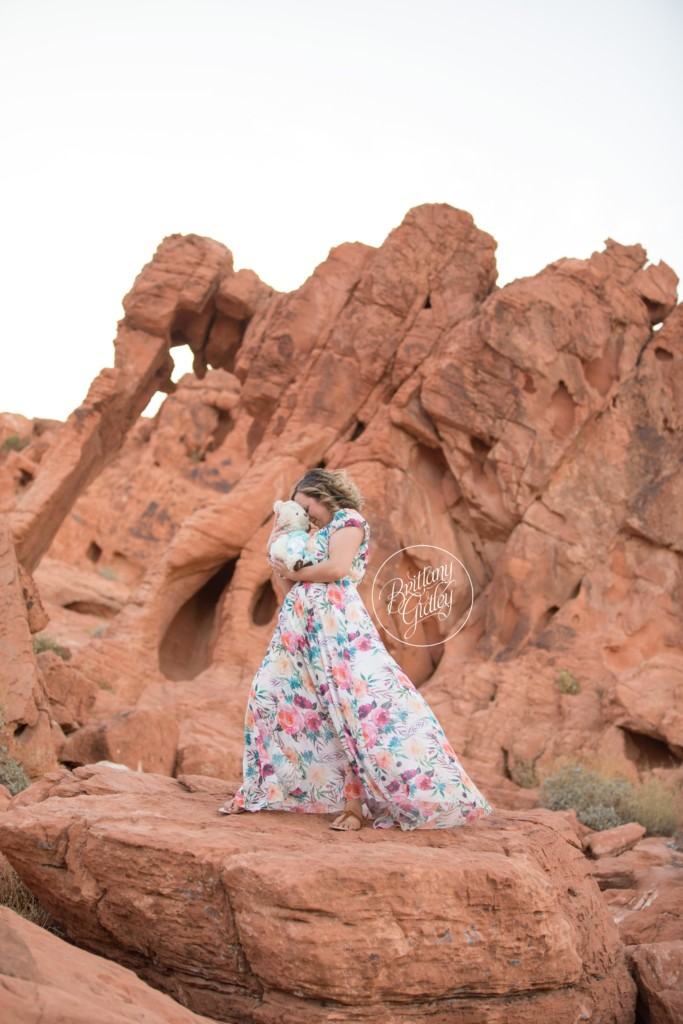 Elephant Rock | Valley of Fire | Travel Photography | Molly Bear | Brittany Gidley Photography LLC