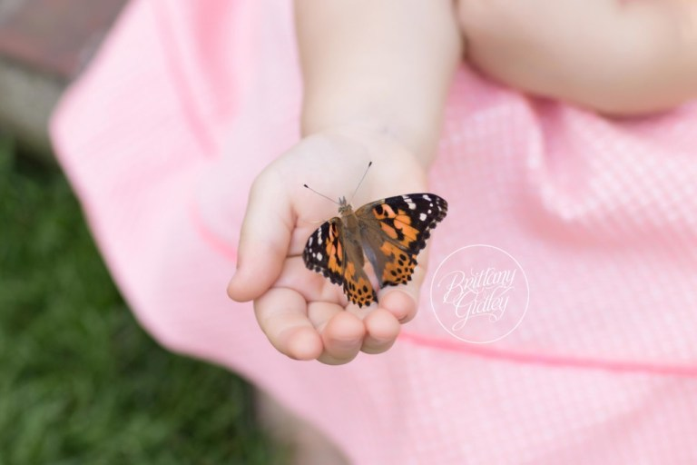 Secret Garden | Butterfly Release | Butterfly Photography | Dream Session | Brittany Gidley Photography | Stan Hywet Hall & Gardens