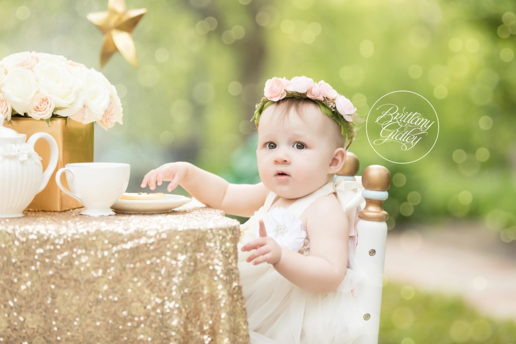 Twinkle Twinkle Little Star Dream Session | Rozlyn 12 Months | Cultural Gardens