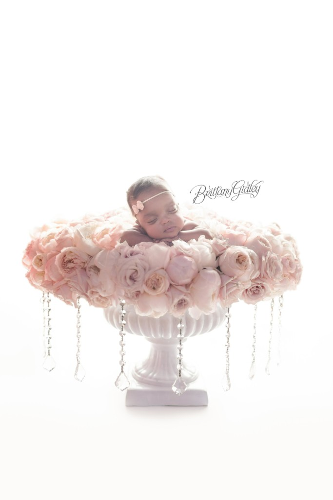 Celebrity Newborn Photographer | HeatherLily Florals | Start With The Best | Dream Session | www.brittanygileyphotography.com