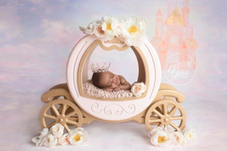Cinderella Newborn | Start With The Best | Dream Session | www.brittanygileyphotography.com