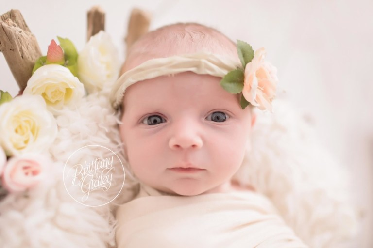 Newborn Girl Inspiration | Start With The Best | Brittany Gidley Photography Cleveland Ohio | Celebrity Newborn Photographer