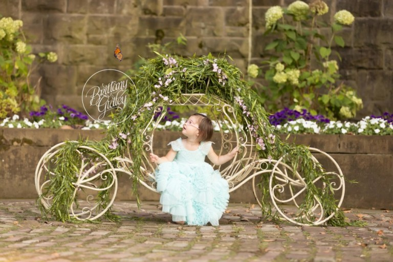 Butterfly Photo Shoot   Princess Birthday   Live Butterfly Photos