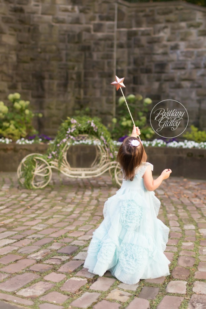 Whimsical Photo Shoot Ideas   Princess Birthday   Two Year Old Princess Photo Shoot