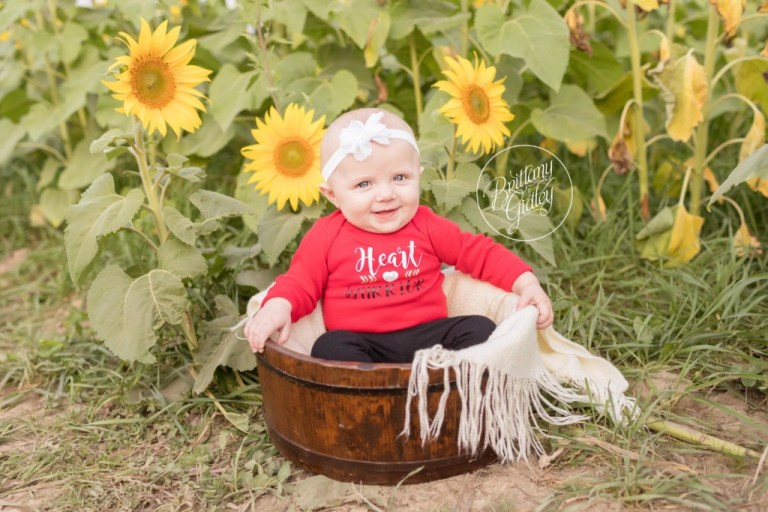 Avon Baby Photographer | Prayers From Maria Sunflower Field | Heart Warrior