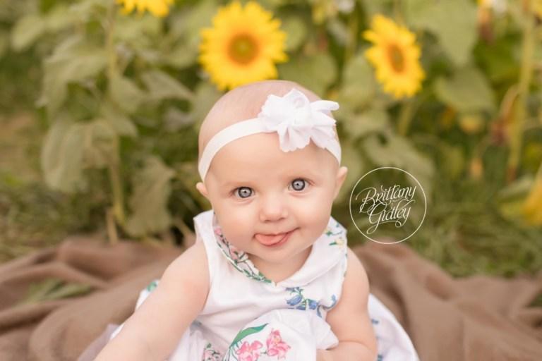 Avon Baby Photographer | Prayers From Maria Sunflower Field | CHD Awareness