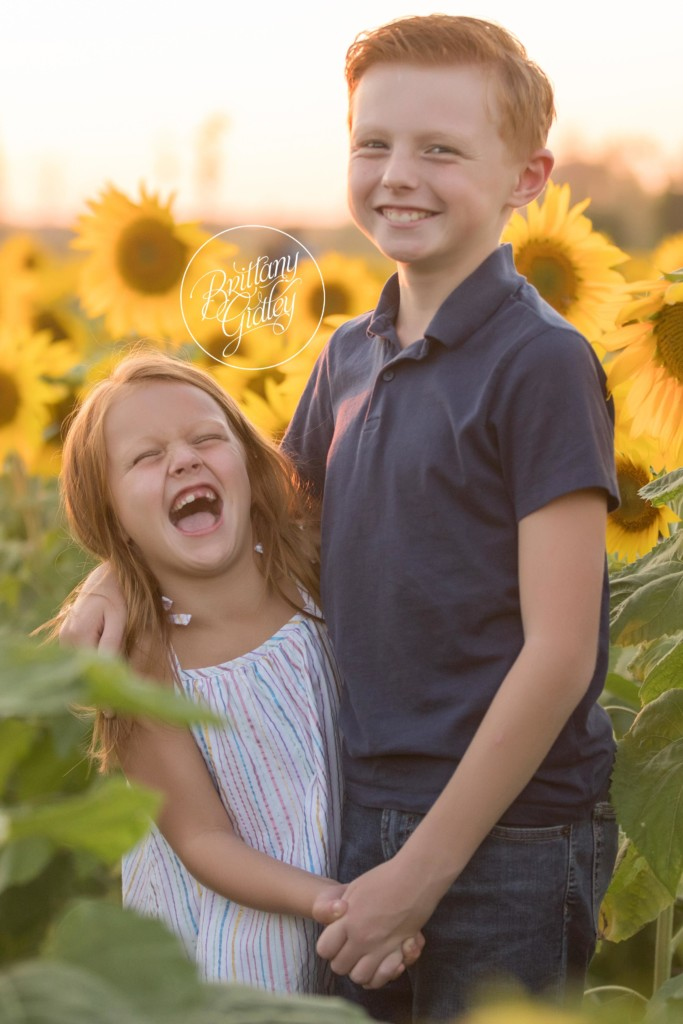 Westlake Family Photography | Prayers From Maria Sunflower Field | Child Photography | Sunflower Field