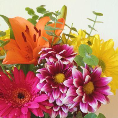 Cultivating Gratitude & Sharing Love // 8