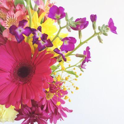 Cultivating Gratitude & Sharing Love // 16