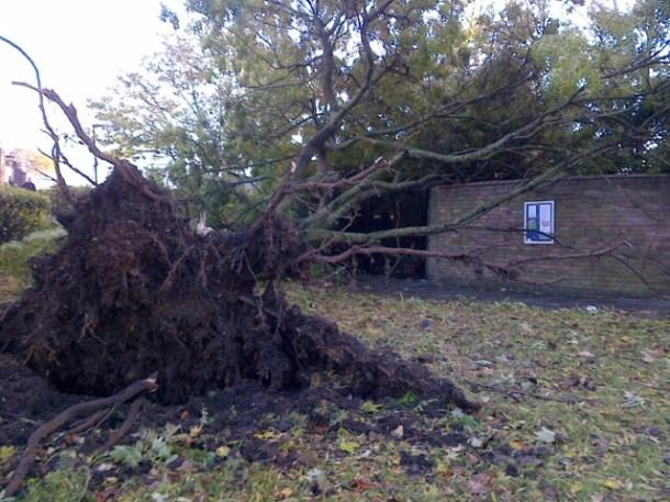 Storm Cressingham2