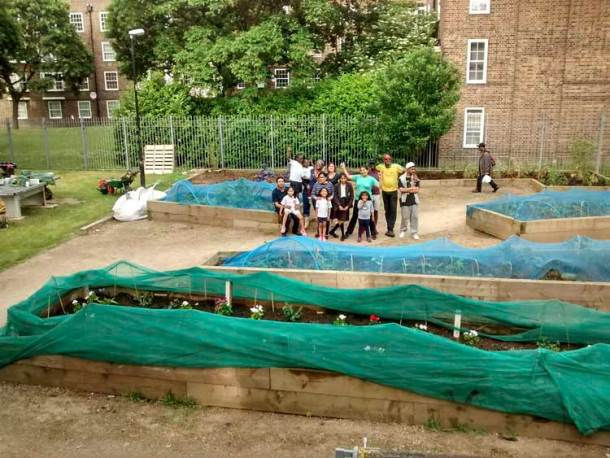 Angela Town community garden