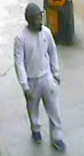Dray Gardens attempted robbery suspect