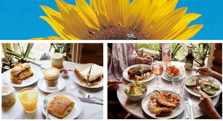 Brixton's Cafe Van Gogh offers new vegan breakfast and summer menus while helping young people back into work!