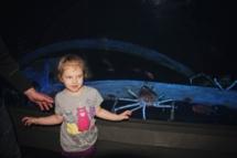 HD Zoo Aquarium 08