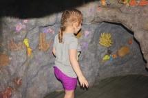 HD Zoo Aquarium 21