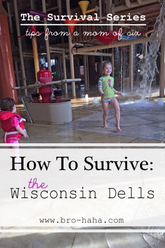 The Survival Series - the wisconsin Dells