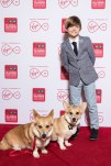 Billy Jenkins and The Crown corgis. The Crown was named Best Digital First Streaming