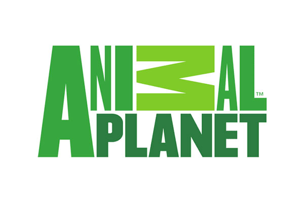 Animal-Planet-logo-600x403px