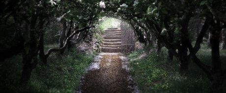 1360056474_the_secret_garden-oo