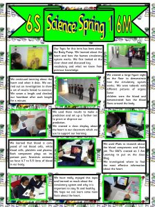 Spring 1 2015 Science Year 6.pub 2