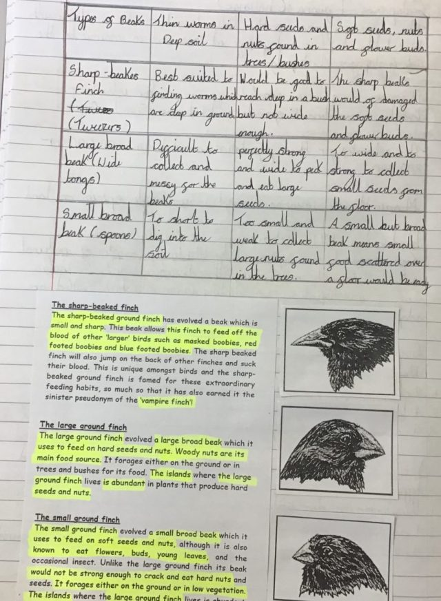 Finch Beak Experiment | Broad Heath Primary School