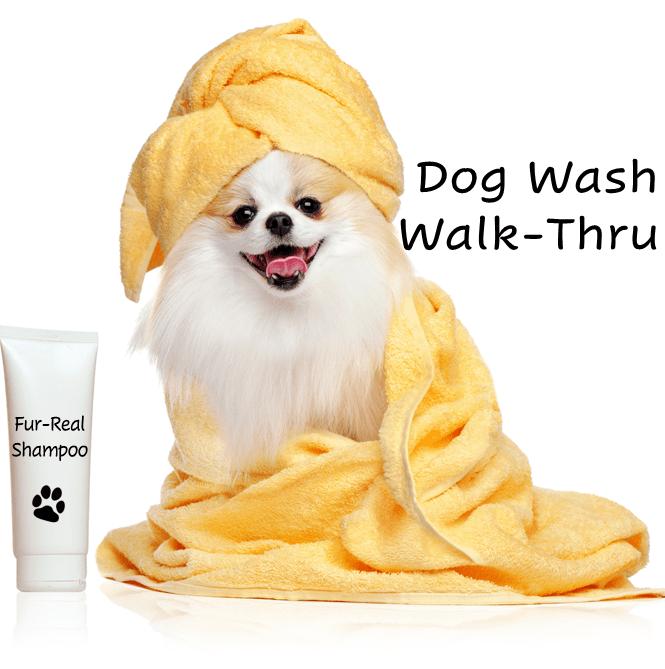 dog wash walk-thru