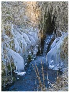 01|02|2012 – Kaltes, klares Wasser