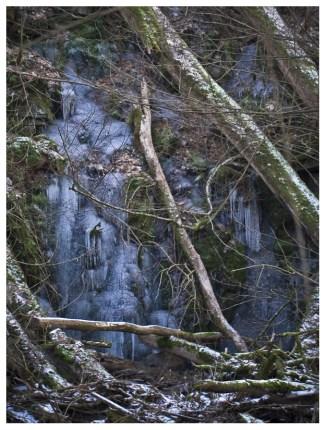 05|02|2012 – Eiswände in der Holzbachschlucht