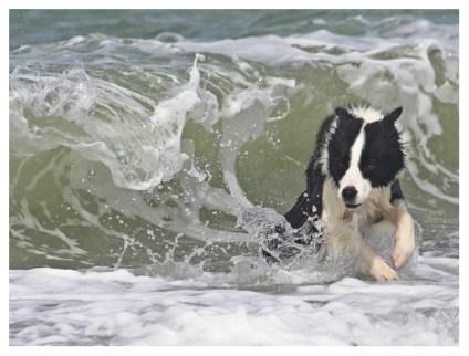 13|05|2012 – Wellenreiten