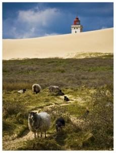08|05|2012 – Aufstieg zum Rubjerg Knude Fyr