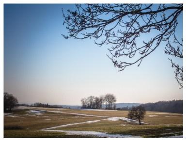 02|03|2013 – Der Frühling kommt