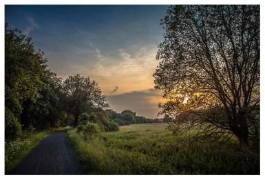 19|06|2013 – Abendstimmung zwischen Rehe und Mademühlen