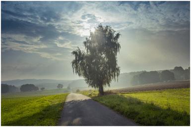 11|09|2014 – Herbstmorgen bei Driedorf