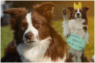 13|11|2014 – Prinzessin Edda's zweiter Geburtstag
