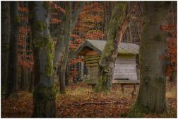 16|11|2014 – Suchbild