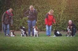 02|10|2016 – Nana mit Jenny, Bounty und Edda mit Jule, Zeppo mit Frauke, Spencer mit Steffi