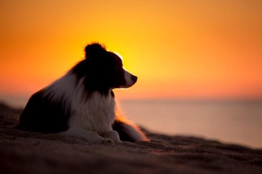 12 05 2018 – Sonnenaufgang am Spiaggia di Osalla