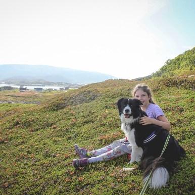 Border Collie Hündin im Urlaub in Norwegen