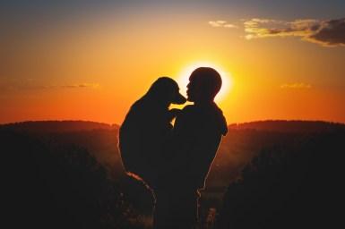 Schattenriss von Hund und Mensch im Sonnenuntergang