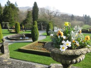 flowers at Rydal hall