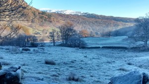 frosty-field-rydal