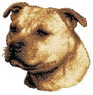 Hundbrodyr Staffordshire bullterrier 1