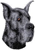 Hundbrodyr Grand danois kuperad svart
