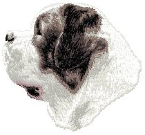 Hundbrodyr Sankt bernhardshund